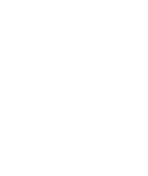 Image of a tooth